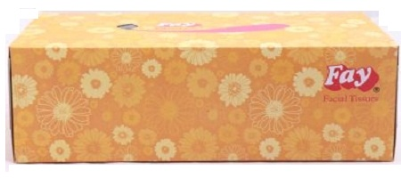 Fay Facial Tissue Big (140 X 2)