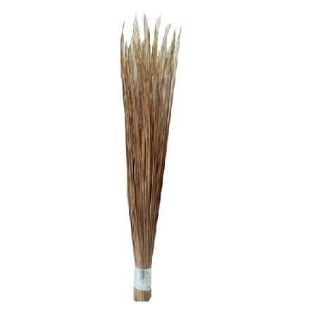 Big Broom 31 Sholar 1 pcs